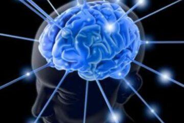 il-potere-del-reggaeton-sul-nostro-cervello